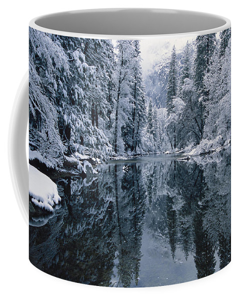 Scenes And Views Coffee Mug featuring the photograph Snow-covered Trees Reflected by Marc Moritsch