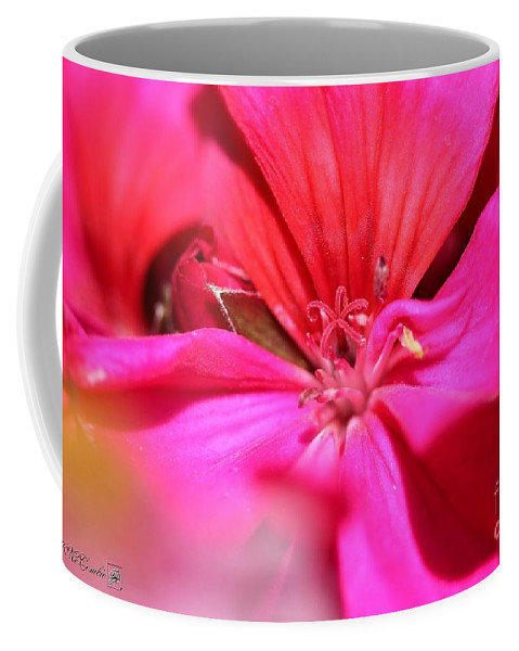 Zonal Geranium Coffee Mug featuring the photograph Zonal Geranium Named Tango Neon Purple by J McCombie