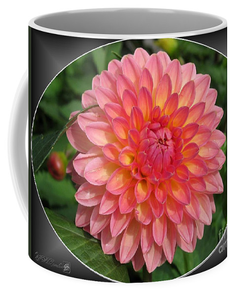 Dahlia Coffee Mug featuring the photograph Dahlia Named Hillcrest Suffusion by J McCombie