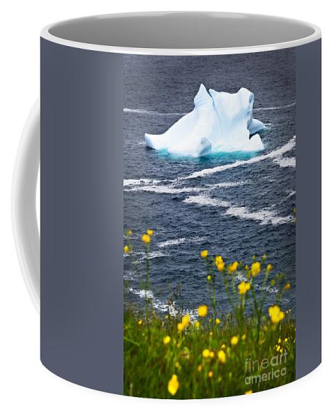 Iceberg Coffee Mug featuring the photograph Melting Iceberg by Elena Elisseeva