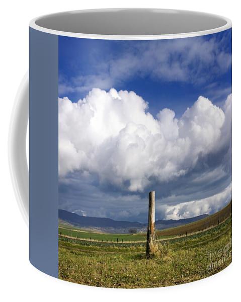 Agriculture Coffee Mug featuring the photograph Wooden Post by Bernard Jaubert