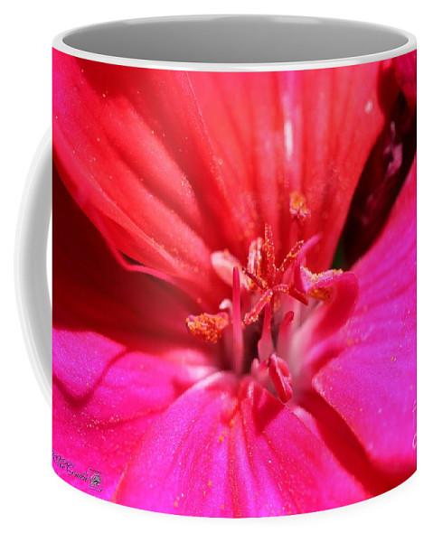 Zonal Geranium Coffee Mug featuring the photograph Zonal Geranium Named Tango Neon Purple by J McCombie