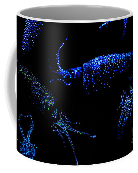Firefly Squid Coffee Mug featuring the photograph Firefly Squid by Dante Fenolio