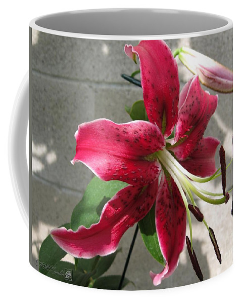 Orienpet Lily Coffee Mug featuring the photograph Orienpet Lily Named Scarlet Delight by J McCombie