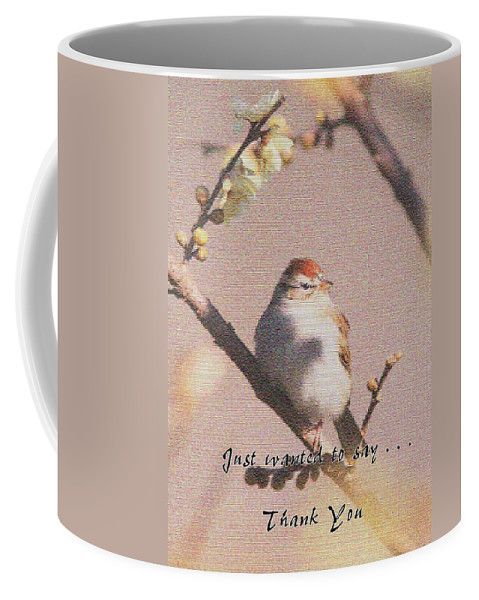 Sparrow Coffee Mug featuring the photograph Thank You by Travis Truelove
