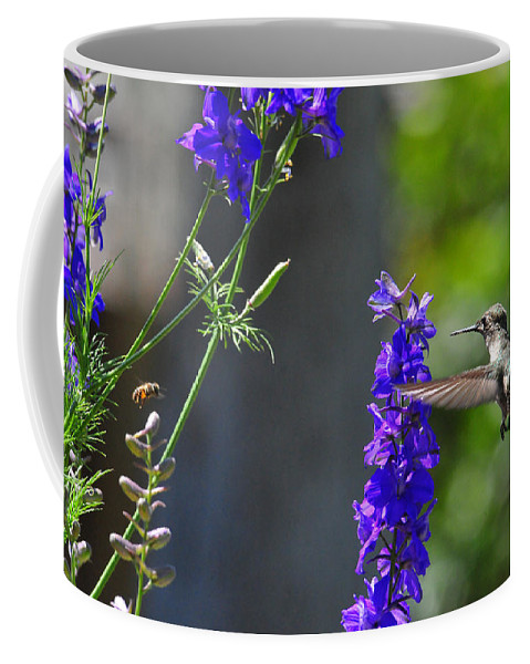 Hummers Coffee Mug featuring the photograph A Bird And A Bee by Lynn Bauer