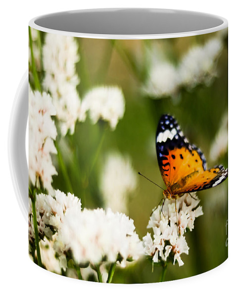 Flower Coffee Mug featuring the photograph A Butterfly Affair by Syed Aqueel