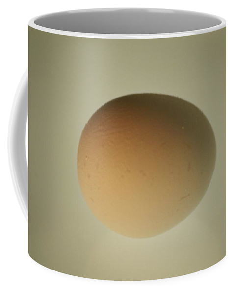 Eggs And Egg Laying Coffee Mug featuring the photograph A Close View Of A Softly-lit Egg by Stephen St. John
