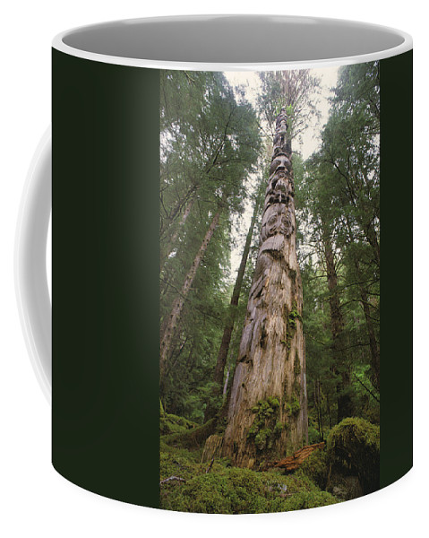 Subject Coffee Mug featuring the photograph A Large Totem Pole Stands Amid Tall by Bill Curtsinger