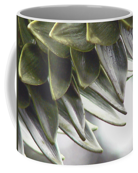 Monkey Puzzle Tree Coffee Mug featuring the photograph A Piece Of The Puzzle by Pamela Patch