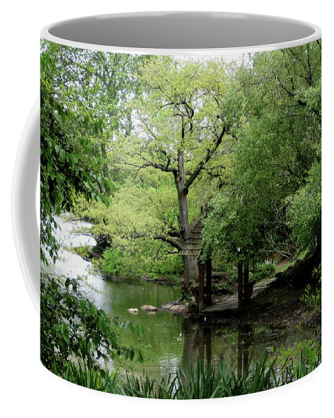 Central Park Coffee Mug featuring the photograph A River Runs Through Central Park by Lorraine Devon Wilke