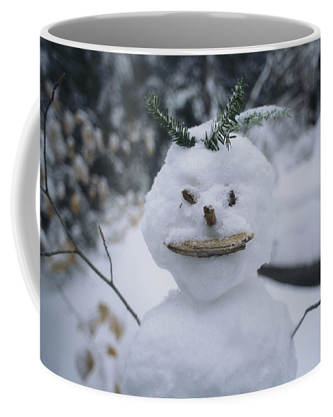 United States Of America Coffee Mug featuring the photograph A Smiling Snowman With Twig Arms by Bill Curtsinger