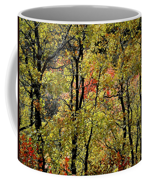Fall Coffee Mug featuring the photograph A Splash Of Fall by Susan Kinney