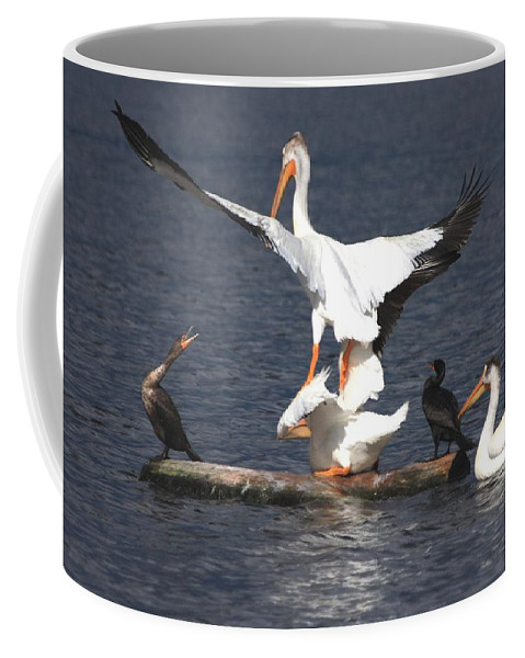Pelican Coffee Mug featuring the photograph A Step Ahead by Shane Bechler