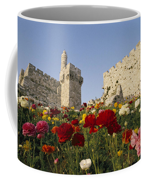 Castles And Palaces Coffee Mug featuring the photograph A View Of Flowers Growing by Richard Nowitz