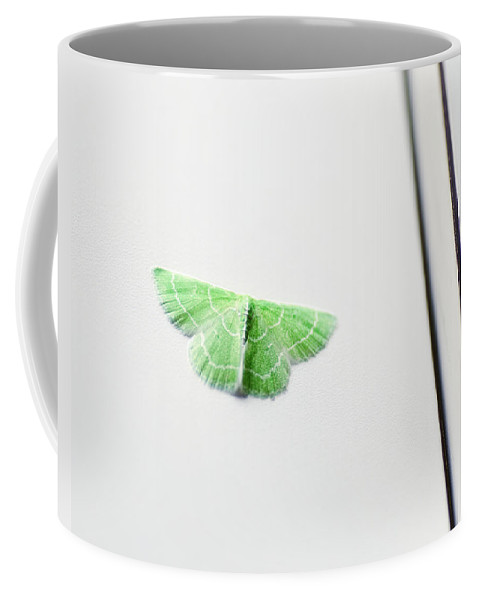 Moth Coffee Mug featuring the photograph A Wee Bit Of Green by Susan Capuano