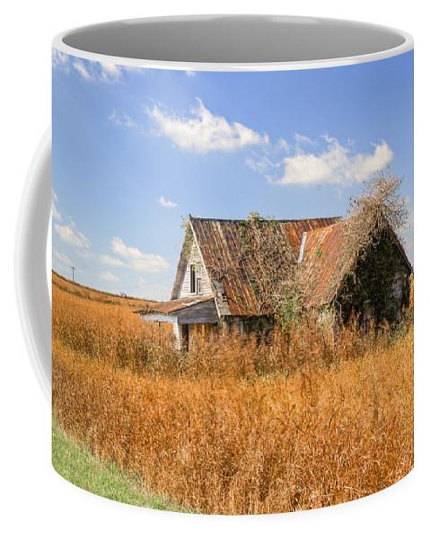 Nostalgia Coffee Mug featuring the photograph Abandoned Farmhouse 7 by Douglas Barnett