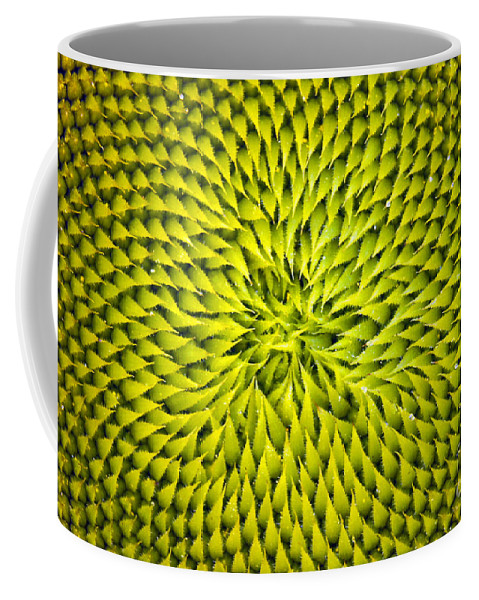 Sunflower Coffee Mug featuring the photograph Abstract Sunflower Pattern by Benanne Stiens