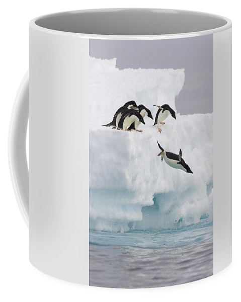 00761831 Coffee Mug featuring the photograph Adelie Penguin Diving Antarctica by Suzi Eszterhas