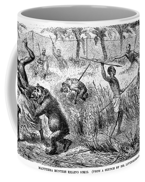1870 Coffee Mug featuring the photograph Africa: Ape Hunting by Granger