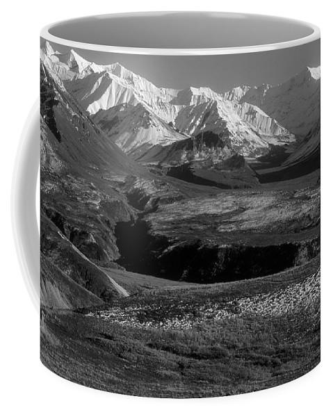 Alaska Coffee Mug featuring the photograph Alaska Valley by Sandra Bronstein