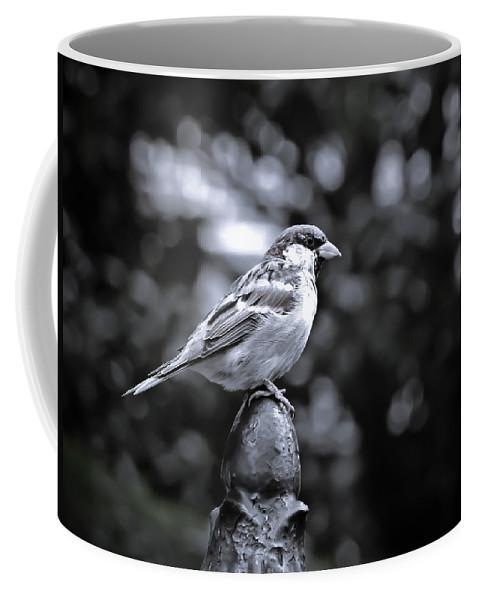 Bird Coffee Mug featuring the photograph Alighten by Jessica Brawley