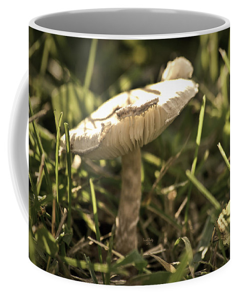 Grass Coffee Mug featuring the photograph All Alone In The Jungle by Trish Tritz