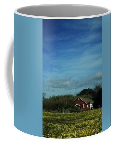 Mustard Coffee Mug featuring the photograph All That Yellow by Laurie Search