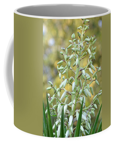Time Coffee Mug featuring the photograph Almost Time by Maria Urso