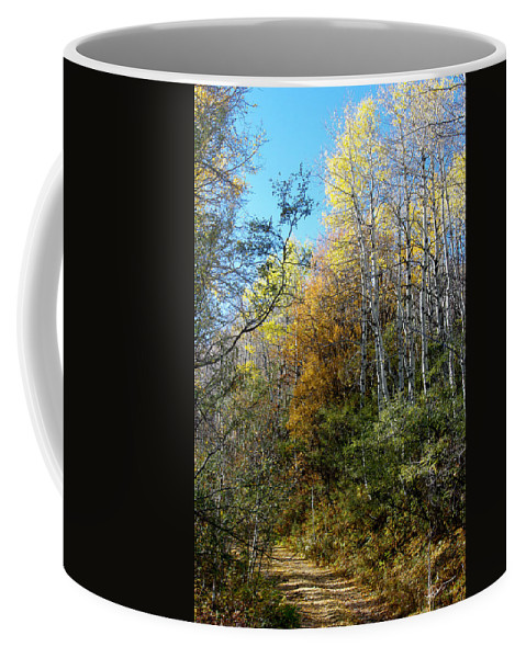 Fall Coffee Mug featuring the photograph Along The Back Road by Vicki Pelham
