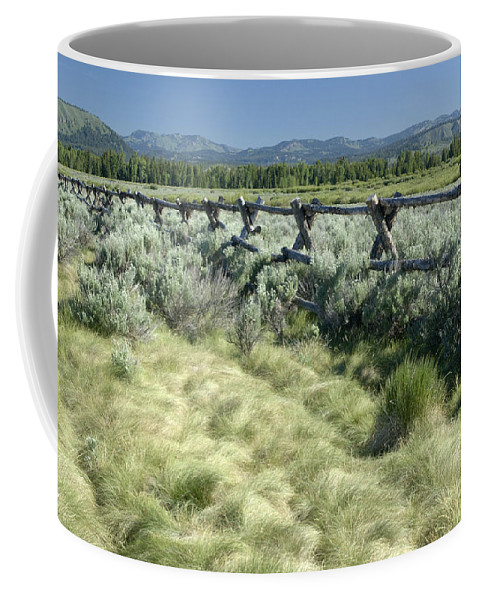 Grand Teton National Park Coffee Mug featuring the photograph Along The Fence by Sandra Bronstein