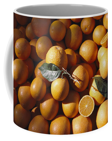Plants Coffee Mug featuring the photograph An Abundance Of Oranges by Bill Curtsinger