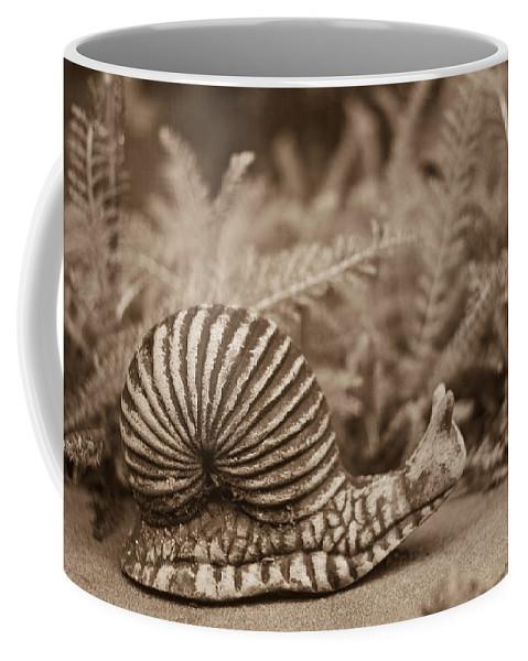 Snail Coffee Mug featuring the photograph Ancient Snail by Douglas Barnett