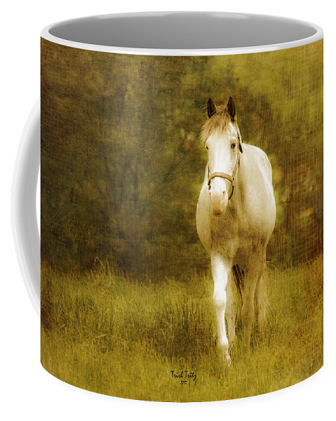Horse Coffee Mug featuring the photograph Andre On The Farm by Trish Tritz