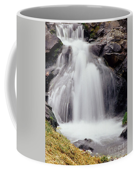 Spokane Wa Coffee Mug featuring the photograph Angel Hair by Sharon Elliott