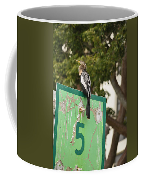 Anhinga Coffee Mug featuring the photograph Anhinga On Marker 5 by Christine Stonebridge
