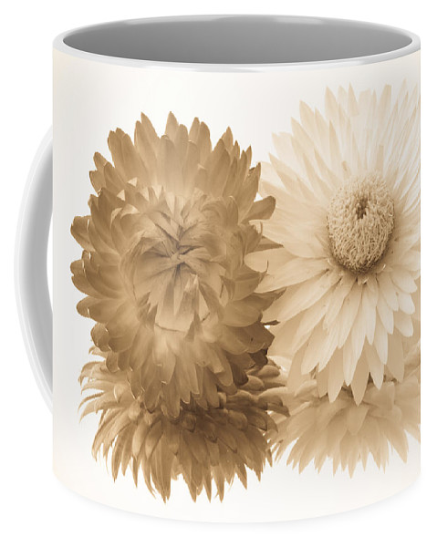 Abstract Coffee Mug featuring the photograph Antique Floral Duo by Heidi Smith