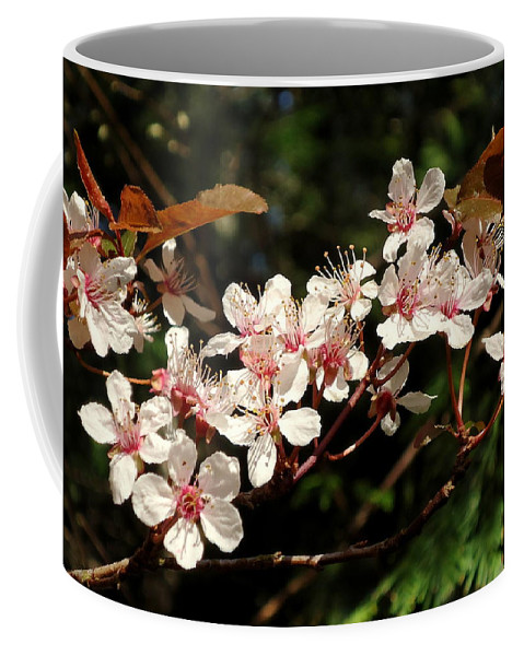 April Coffee Mug featuring the photograph April Plum Blossom by Peter Mooyman