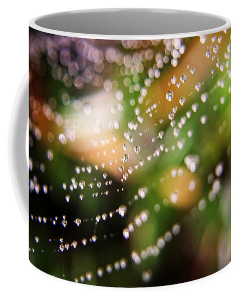 Spider Web Coffee Mug featuring the photograph April Showers by Heather Applegate