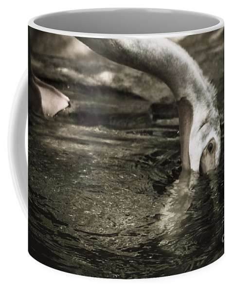 Water Fowl Coffee Mug featuring the photograph Are You Getting This by Kim Henderson
