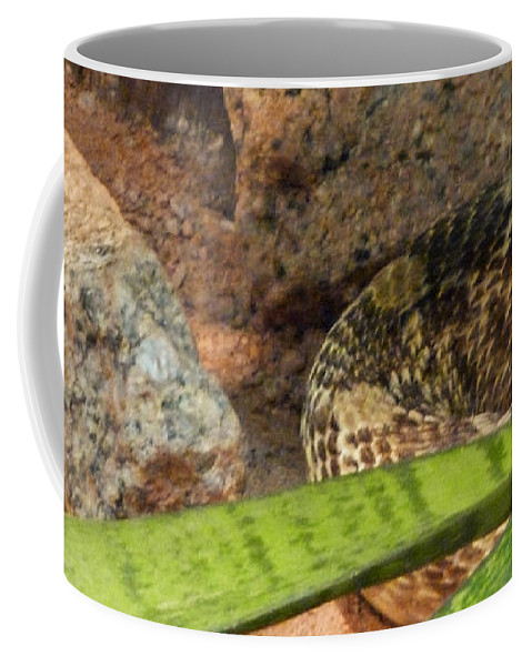 Arizona Rattler Coffee Mug featuring the photograph Arizona Rattler by Methune Hively