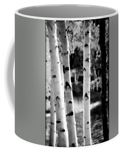 Chena Coffee Mug featuring the photograph Aspens by Kathy Sampson