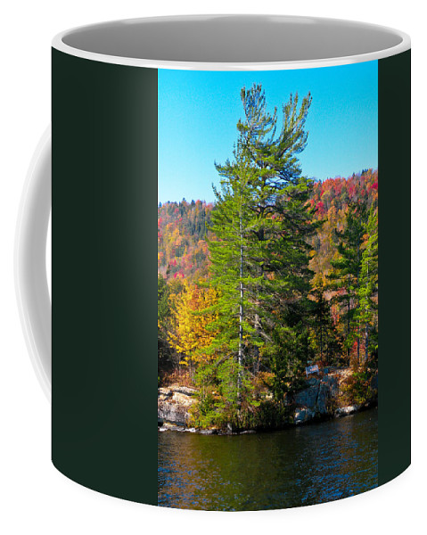 The Adirondacks Coffee Mug featuring the photograph Adirondack Color P8 The White Bench by David Patterson