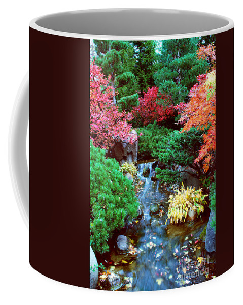 Garden Coffee Mug featuring the photograph Autumn Garden Waterfall I by Nancy Mueller