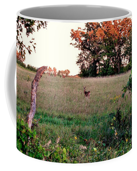 Fall Scene Coffee Mug featuring the photograph Autumn Hunt by Marilyn Smith