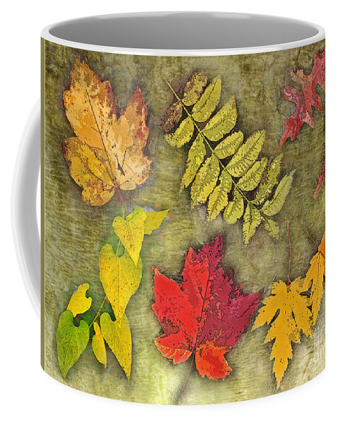 Nature Coffee Mug featuring the photograph Autumn Leaf Collage by Debbie Portwood