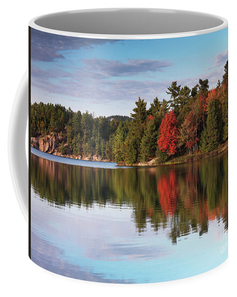 Autumn Coffee Mug featuring the photograph Autumn Nature Lake And Trees by Oleksiy Maksymenko