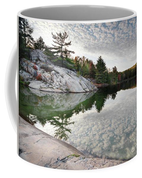 Lake Coffee Mug featuring the photograph Autumn Nature Lake Rocks And Trees by Oleksiy Maksymenko