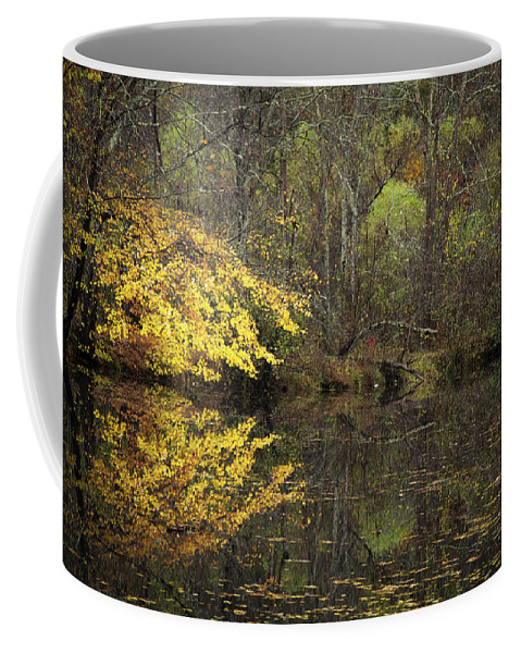 Autumn Coffee Mug featuring the photograph Autumn On The Pond by Rob Travis