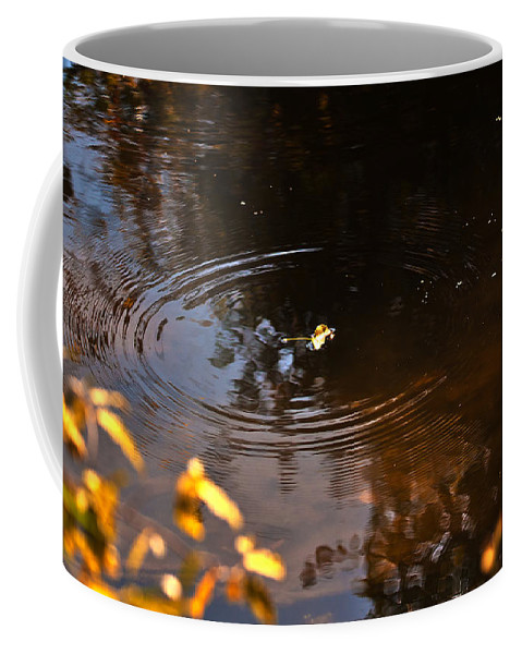 Leaves Coffee Mug featuring the photograph Autumn Rings by Edward Peterson
